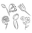 flower art line vector image vector image