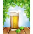glass of beer and hops vector image vector image