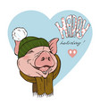 pig wearing a scarf and hat vector image vector image