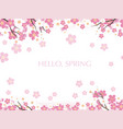 seamless cherry blossom background vector image