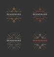 Set of Vintage Labels Logotypes Insignias Badges vector image vector image