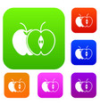 the whole apple and half set collection vector image