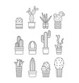 cacti and succulents flat linear icons vector image