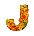 autumn stylized alphabet with foliage letter j vector image vector image