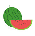 flat fresh watermelon with slice vector image