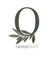 olive branch on capital letter o isolated on vector image vector image
