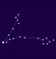 pisces constellation starry night sky cluster of vector image vector image