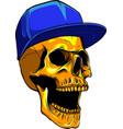 skull head with hat design vector image