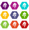 tree icons set 9 vector image
