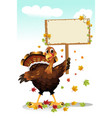 turkey holding a sign vector image vector image