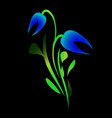 blue tulip for greeting card on a black background vector image vector image