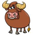 bull farm animal comic character cartoon