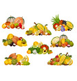 fruit and berry icons exotic fruity food vector image vector image