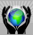 hands globe vector image vector image