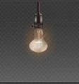 light bulb or electric lamp in retro pear shape 3d vector image vector image