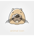 Otter beaver flat icon Animal head vector image