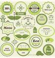 set of eco labels and vegetarian design elements vector image