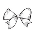 sketch bow with ribbon vector image