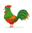 colorful cock poultry breeding vector image