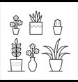 plants in thin linear style vector image