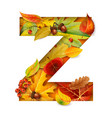 autumn stylized alphabet with foliage letter z vector image vector image