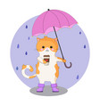 beautiful cartoon cat with coffee and umbrella vector image vector image