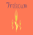 flat on background natural triticum vector image vector image