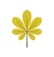 Leaf of chestnut vector image vector image