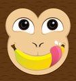 Monkey eat banana vector image vector image