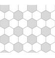 soccer ball texture vector image vector image