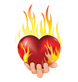 heart fire vector image vector image
