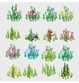 Icons grass with colorful flowers and coral vector image