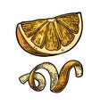 lemon slice and peel twirled black vintage vector image vector image
