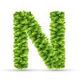 letter n alphabet green leaves vector image vector image