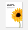 sunflower realistic isolated on white daisy vector image