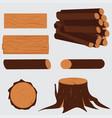 tree lumber wooden vector image