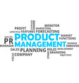 word cloud product management vector image vector image