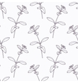 Hand drawn stevia branch outline seamless pattern vector image vector image