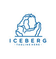iceberg logo design vector image