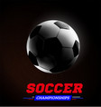 soccer or football ball in the backlight on black vector image