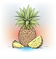 Colorful watercolor pineapple vector image