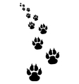 footprints of dogs 4 vector image