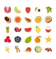 fruit flat icon pack vector image