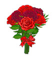 hand drawn red roses bouquet vector image vector image
