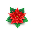 realistic poinsettia flower red star xmas vector image