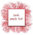 Texture of red coral and frame for text vector image vector image