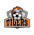 tiger soccer football ball crest mascot vector image vector image