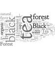 black forest tea vector image vector image