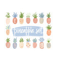bundle of hand drawn pineapples of different color vector image vector image