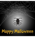 Cute spider and web with Happy Halloween text vector image vector image